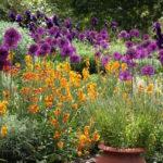 biodiversiteit in tuin - Onderhoud beplanting - de plant technicus