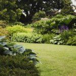 de plant technicus - onderhoud beplanting