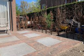 Aanleg tuin - De plant technicus
