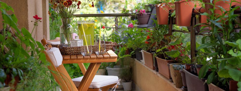 Biodiverse beplanting balkon De Plant technicus hoveniersbedrijf