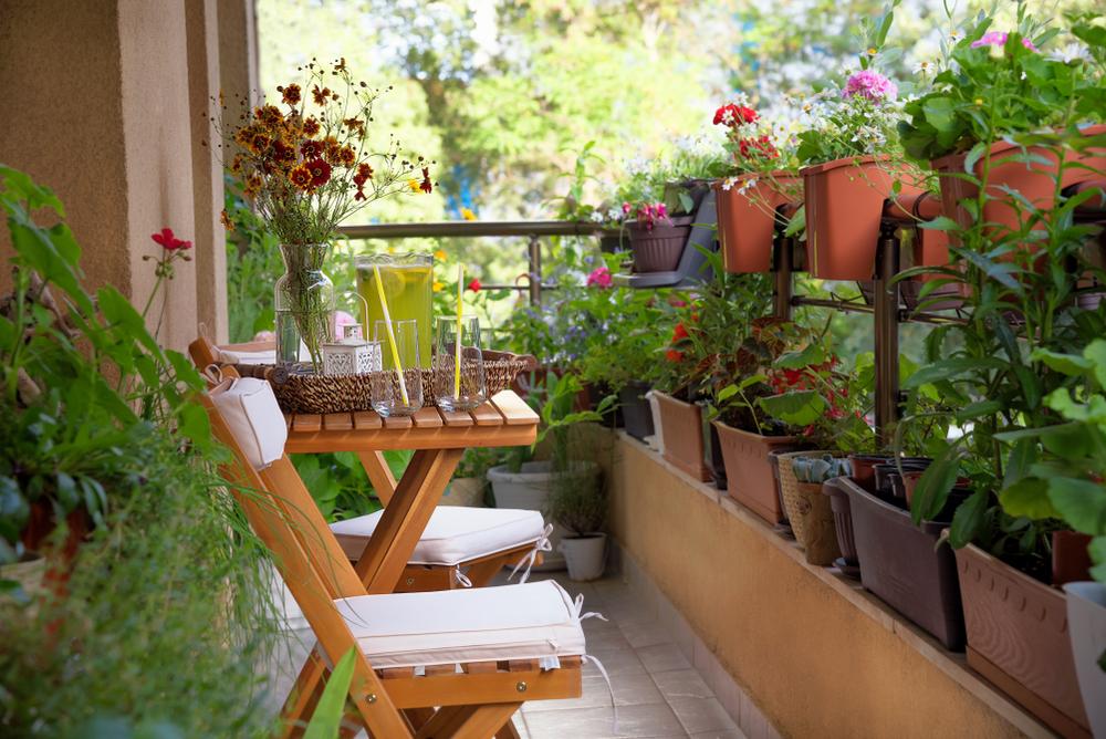 Biodiverse beplanting balkon