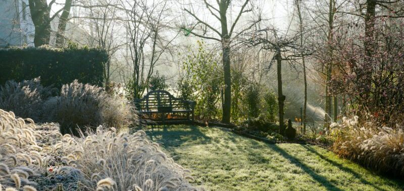 Tuinonderhoudin de winter