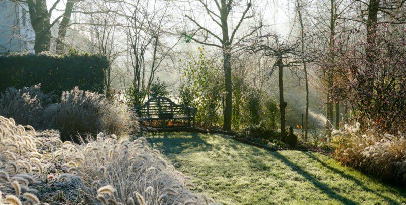 Tuin onderhoud in de winter